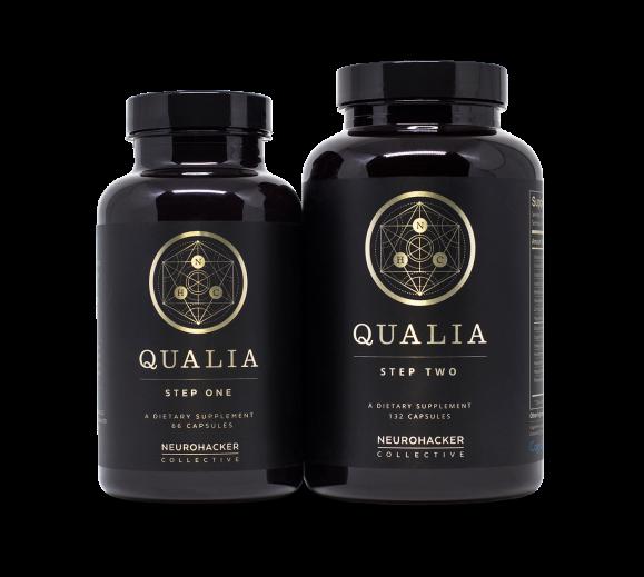 Qualia1_2